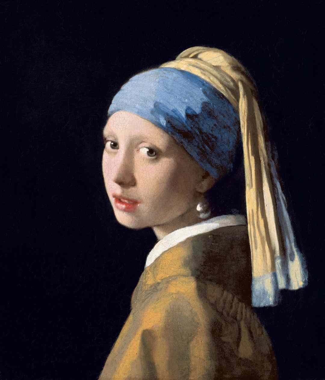 A Lady with a pearl earring